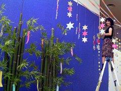 tanabata2009no3.JPG
