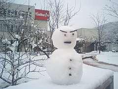 080121雪化粧2.jpg