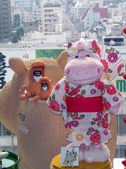 200907gatsuno1.JPG