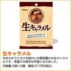 FCARAHYOU0906NO3.JPG
