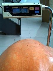 harofan201010no8.JPG