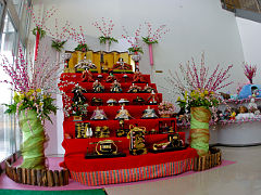 hinakazari2009no1.JPG