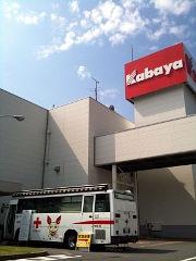 kenketsu20100603no1.jpg