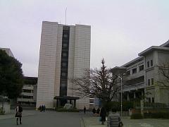 komazawa090129no1.JPG