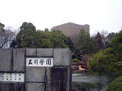 tamagawa090128.JPG