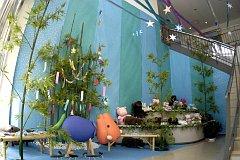 tanabata2008no1.JPG